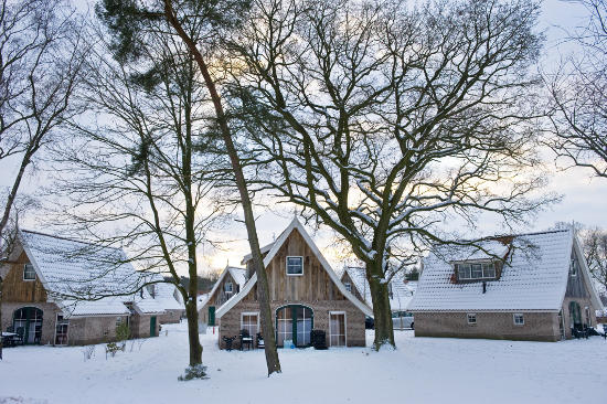 Landgoed De Hellendoornse Berg im Winter. Bild: Landal GreenParks GmbH