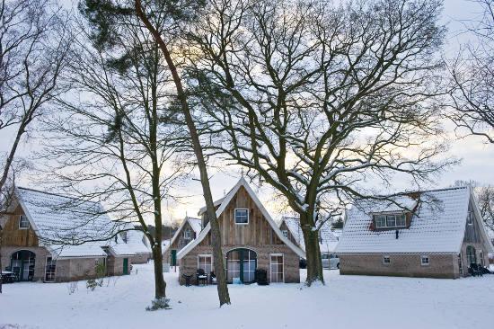 Weihnachtsstimmung inklusive: die Landal-Ferienparks im Winter. Bild: Landal GreenParks GmbH