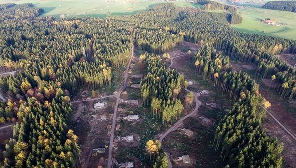 Das Gelände des zukünftigen Park Allgäu. Bild © Groupe Pierre & Vacances-Center Parcs