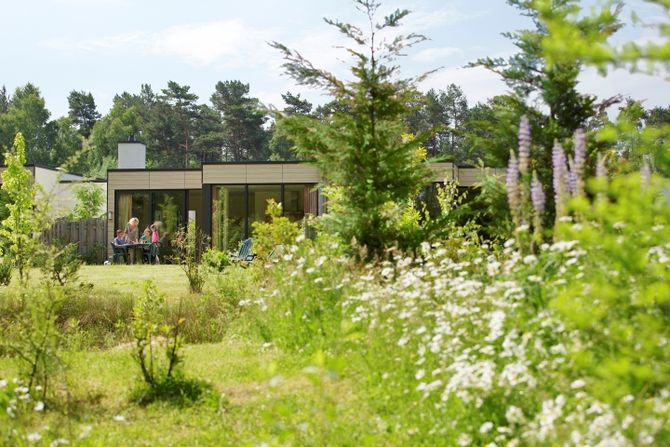 Der Center Parcs Bispinger Heide. Bild © Groupe Pierre & Vacances-Center Parcs