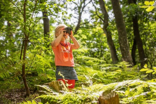Gute Aussichten für Landal GreenParks. Bild: Landal GreenParks GmbH / RHL belevingsfotografie zomer 2016