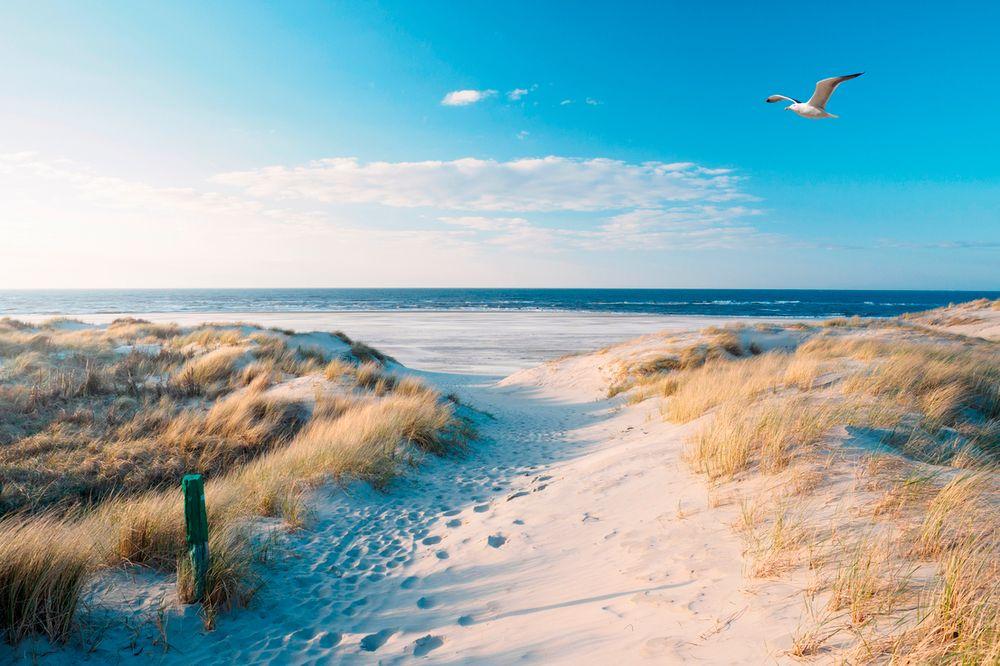 Neuer luxuriöser Küstenpark Landal Berger Duinen jetzt buchbar